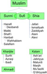 profetens koner