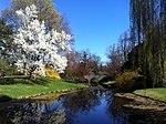 Dow Gardens-Spring.jpg