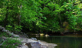 Down-to-the-river-to-pray - West Virginia - ForestWander.jpg