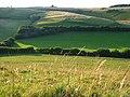 Downland, Sydling St Nicholas - geograph.org.uk - 910753.jpg