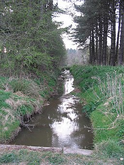 Drainage channel in Newborough Forest - geograph.org.uk - 405596