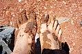 Dried mud (7575103938).jpg