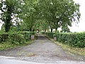 Driveway. - geograph.org.uk - 447392.jpg