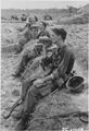 Duc Pho, Vietnam....Members of the 25th Infantry Division drink from their canteens during a break in their patrol... - NARA - 531450.tif