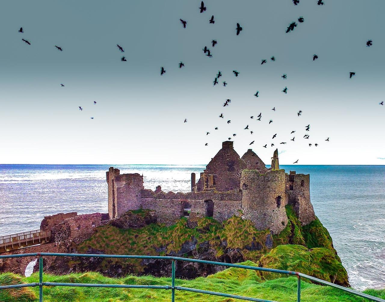 Birds flocking above dunluce castle