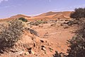 Dunst Namibia Oct 2002 slide135 - Weitblick.jpg