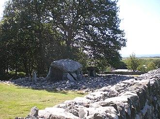 Dyffryn Ardudwy - Image: Dyffryn Burial chamber outskirts, nr. Barmouth, Wales