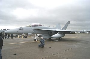 VAQ-137 - VAQ-137 EA-18G in 2013
