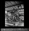 ETH-BIB-Iguanodonten Bernissart-Namur, Skelett-Gruppe-Dia 247-F-00535.tif
