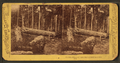 Effects of Union shot and shell on Culp's Hill, by Tipton, William H., 1850-1929.png