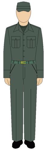 Egyptian Army field overall