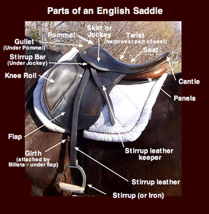 Image result for english saddle images