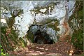 Entrée de la grotte du Hohlenstein LAUW - panoramio.jpg