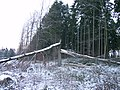 Entzwei - panoramio.jpg