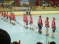 Equipo checo de hockey en linea - World Games 2013.JPG