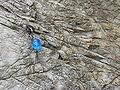 Erosion limestone.JPG