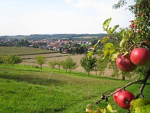 Eschelbronn Panorama(1).jpg