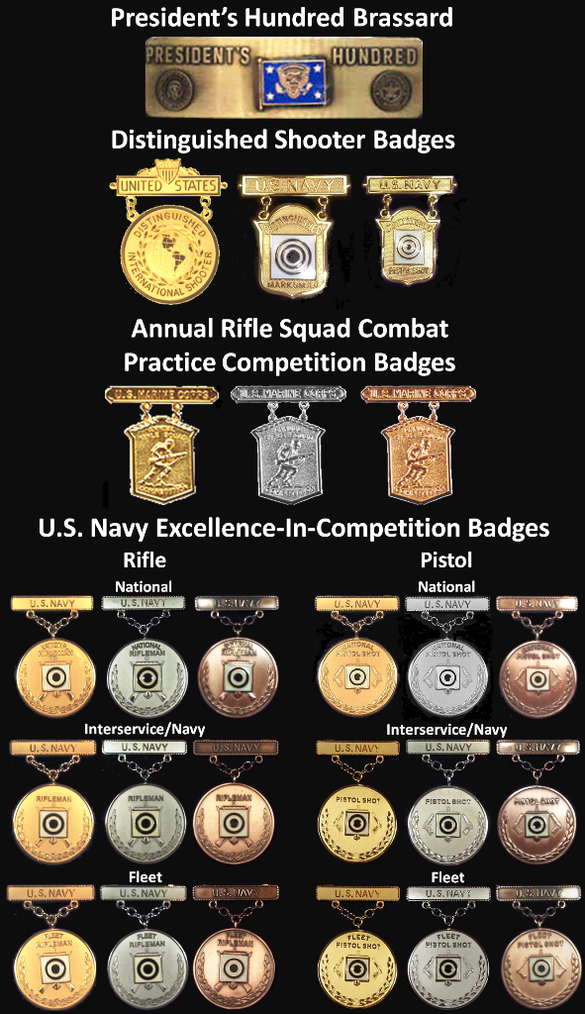 Example-USN Marksmanship Competition Badges.png