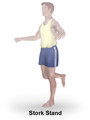 Exercise Stork Stand.png