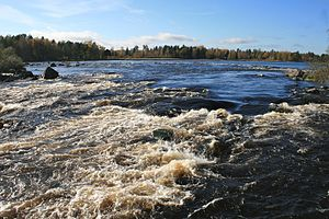 Färnebofjärden National Park - The rapids of Gysinge