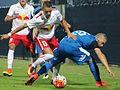 FC Liefering gegen SC Wiener Neustadt (23. September 2016) 31.jpg