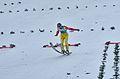 FIS Ski Jumping Worldcup Engelberg 2014 (15907180608).jpg