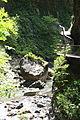 FR64 Gorges de Kakouetta77.JPG