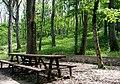 Faeto wood table.jpeg