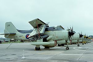 Fairey Gannet AEW.3 - Gannets lined up on the flightline at RAF Lossiemouth in 1977