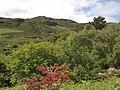 Farbreiga from Largan - geograph.org.uk - 486697.jpg