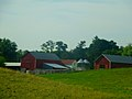 Farm East of Madison - panoramio.jpg
