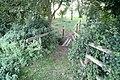 Farm walk footbridge - geograph.org.uk - 1462110.jpg