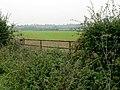 Farmland by Lings Lane - geograph.org.uk - 262116.jpg