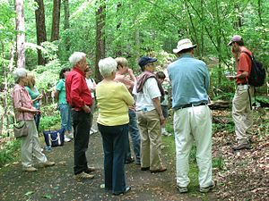 Fernbank Forest - Tour at Fernbank Forest