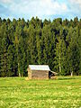 Field barn in Itäkylä.JPG