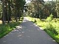 Fläming-Skate RK4 am km 6,0 - panoramio (1).jpg