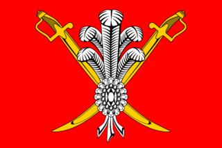 Флаг Коломяг
