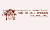 Te-Moak Tribe of Western Shoshone Indians of Nevada