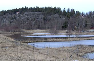 Orlången - Meandering waters at the wetland purifying facility north of the lake.