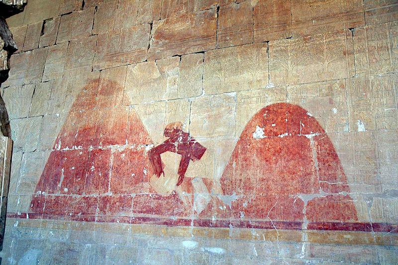 800px Flickr   Gaspa   Tempio di Hatshepsut%2C affreschi %281%29 Sudans Aromatic Culture