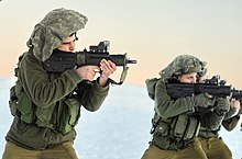Israel Defense Forces - Wikipedia