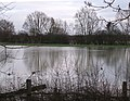 Floods on the Buckinghamshire-Oxfordshire border - geograph.org.uk - 304269.jpg