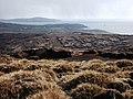 Flugarth Hill, Shetland - geograph.org.uk - 145109.jpg