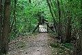 Footbridge in Forge Wood - geograph.org.uk - 1492444.jpg