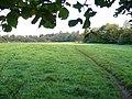 Footpath to Miltoncourt Farm - geograph.org.uk - 589584.jpg