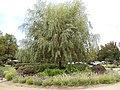 Franciscan Winery, St. Helena, California, USA (6246793274).jpg