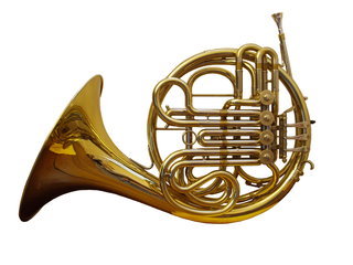 French horn type of brass instrument