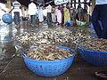 Fresh fish auctioning(Malpe Port).JPG