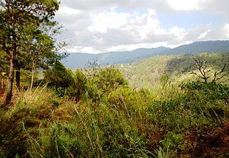 Benguet - Highland landscape at Bokod