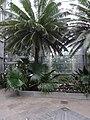 Garden Court - US Botanic Gardens 26.jpg